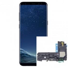 Reparacion/ cambio Altavoz buzzer Samsung Galaxy S8 G950F