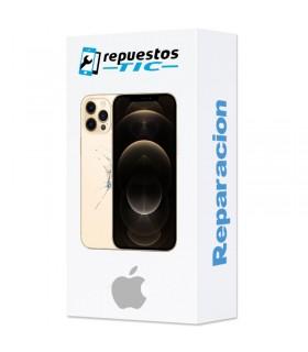 Reparacion/ cambio Tapa trasera iPhone 12 Pro Max