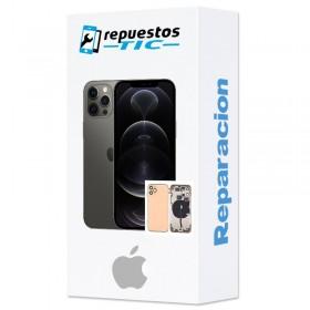 Reparacion/ cambio chasis iPhone 11 Pro Max