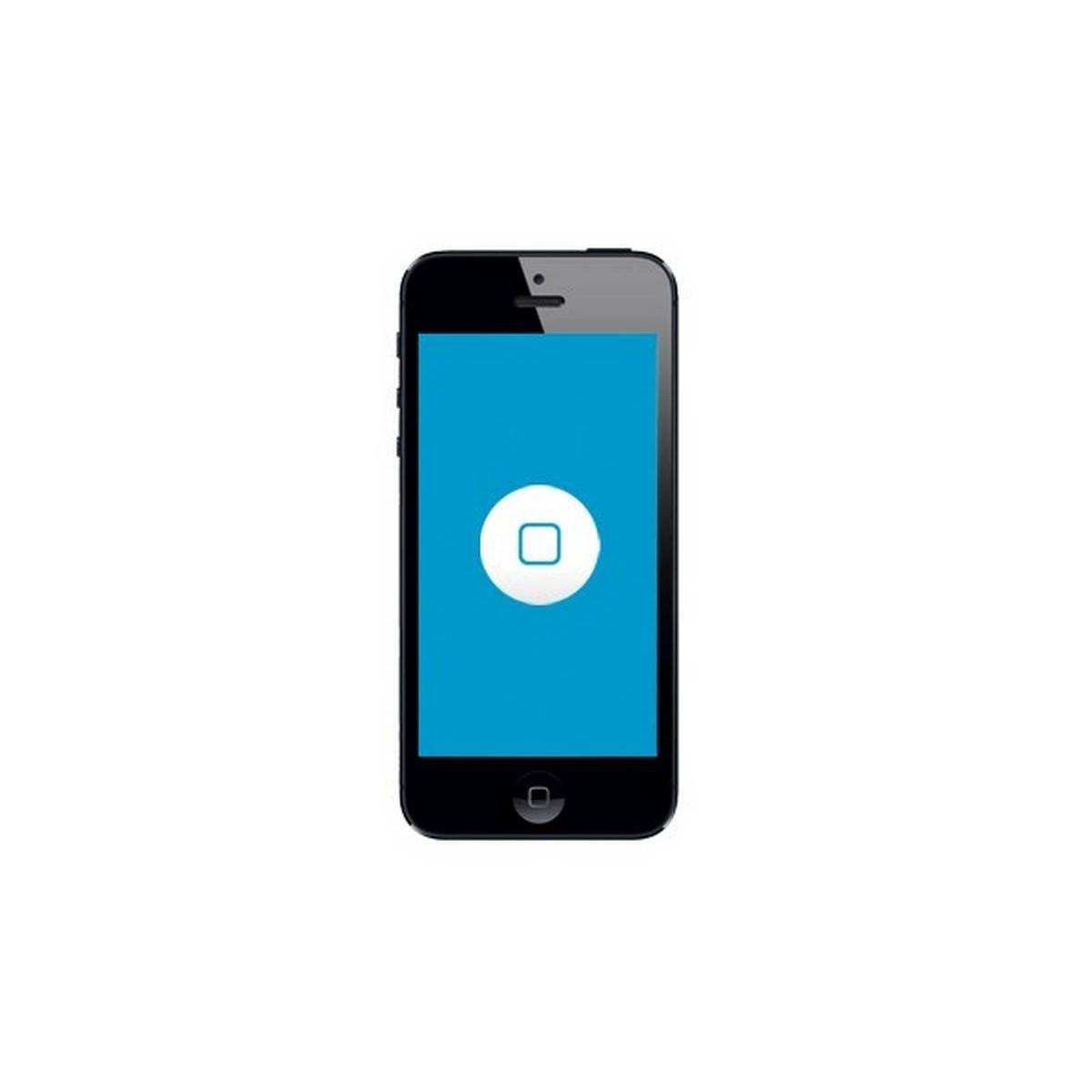 sustituion botão Home iPhone 5 5s 5c
