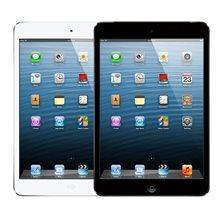 iPad Mini (A1432 A1454 A1455)